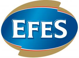 Логотип Efes Group